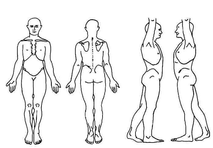 Chart Body Hobitfullring
